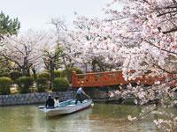 九華公園・写真