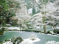 北畠氏館跡庭園・写真