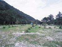 八風キャンプ場・写真