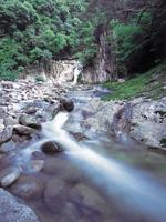 ガンガラ滝・写真