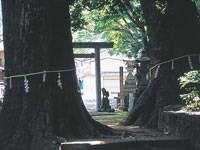 飛鳥神社・写真