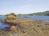 浮島自然水族館・写真