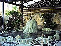 神園温泉・写真