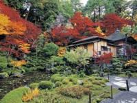 明寿院・写真