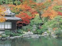百済寺・写真