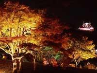 彦根城玄宮園・写真