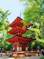 浄瑠璃寺・写真