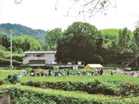 山城多賀フルーツライン・写真