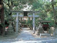 県神社・写真