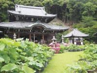 三室戸寺・写真