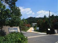 近つ飛鳥風土記の丘・写真