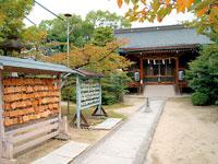 意賀美神社・写真