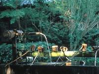 離宮の水・写真