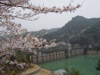 奥山雨山自然公園・写真
