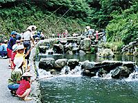 千早川マス釣場・写真