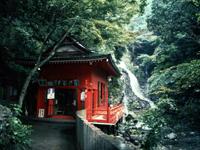 犬鳴山・和泉葛城山ハイキングコース・写真