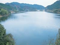 滝畑ダム・写真