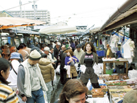 田尻漁港日曜朝市・写真