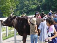 兵庫県立但馬牧場公園・写真