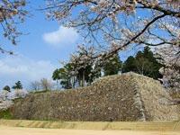 篠山城跡・写真