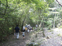 姫路市自然観察の森・写真
