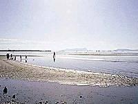 新舞子浜・写真