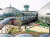 姫路市立手柄山温室植物園・写真