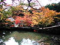 円通寺の紅葉・写真