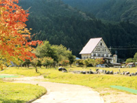 WAKO PARKキャンプ場・写真