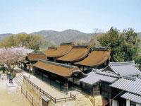 賀茂神社・写真