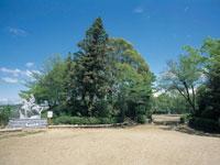 三木城跡・写真
