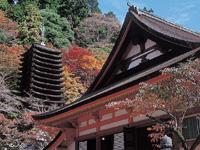 談山神社の紅葉・写真