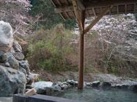 藤の森不動温泉・写真