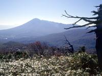 八幡平(岩手県)