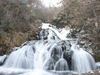 中野白滝・写真