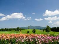 安比高原の花壇・写真