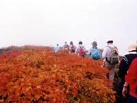 須川高原・写真