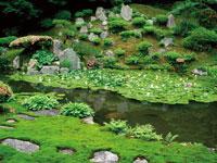 興禅寺庭園・写真