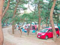 北条オートキャンプ場・写真