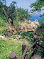 浦富海岸自然探勝路・写真