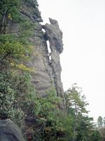 トカゲ岩・写真