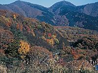 蒜山大山スカイライン・写真