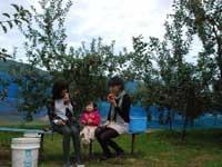 山上観光りんご園・写真