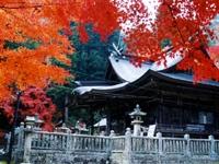 三室山公園