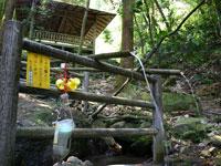 桂の滝・写真