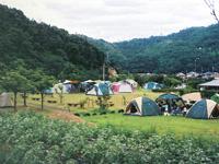 田万川キャンプ場・写真