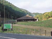 深坂自然の森キャンプ場・写真
