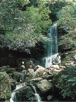 徳仙の滝・写真