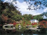 長府庭園・写真
