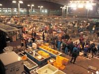 唐戸市場・写真